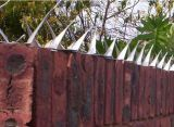 중간 유형 벽 스파이크 담