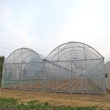 농업과 뜰을 만들기를 위해 Multispan 필름 온실을 판매하는 가장 싼 공장