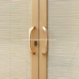 Ventian Vorhänge eingeschoben im doppelten hohlen Glas für Schiebetür
