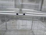 オーストラリア1500mm x 1800mm x 1800mmの構築の大箱の屑ケージ