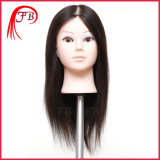 2016 100%Cheap Human Hair Afro Training Mannequin Head