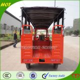 Rad-Auto Qualitätchongqing-3