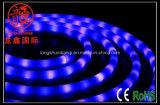 옥외 네온 유연한 LED 지구