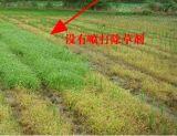 Herbicida elevado 5% Mesotrione da formulação de Effency + Atrazine de 20%