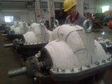 Bomba centrífuga eléctrica de la succión doble de la sola etapa con los certificados del CE