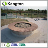 Outdoor di plastica Flooring (decking di WPC)