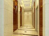 화려한 차를 가진 호텔 전송자 엘리베이터