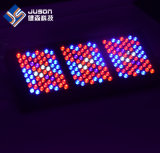 Customizable LED는 5W Epistar Brideglux를 가진 가벼운 1000W를 증가한다