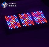 O diodo emissor de luz customizável cresce 1000W claro com 5W Epistar Brideglux