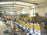 Linea di produzione del succo di arancia fabbrica industriale del succo di piccola frutta dell'estrattore della spremuta