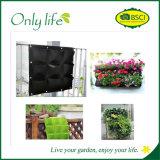 Plantador vertical económico de la pared de Onlylife todos los colores