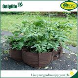 Le jardin réutilisable de tissu d'Onlylife élèvent le planteur de patio de sacs