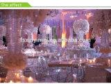 Decoraciones al por mayor de la boda Suministros para sillas de Resina Clara Phoenix