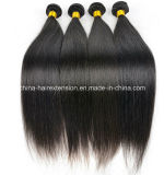 等級5A Natural Black ColorブラジルのVirgin Hair Weave