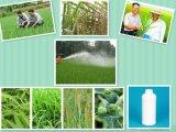 Nagelneues Produkt treffen auf Korn-, Weizen-und Hülsenfrüchte, Prothioconazole Fungizid zu