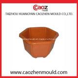 De vierkante/Plastic Vorm van de Pot van de Bloem van de Tuin in Huangyan