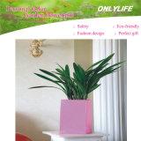 Onlylife personalizou o potenciômetro de flor de feltro da decoração