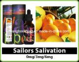 E-Liquid sano E Liquid per la E Cigarette