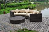 Insieme sezionale rotondo mezzo di vimini del sofà del più nuovo rattan attraente del giardino