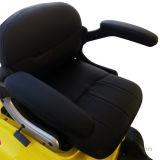 Motocicleta eléctrica de la rueda caliente de la venta 3 para la anciano