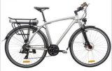 """28 """" 250W Mountain Electric Bike"""