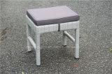 Chaise extérieure de Tableau de loisirs de rotin