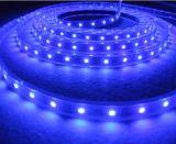 Lumière bleue de corde ronde du fil DEL de la couleur 2, lumière de bande
