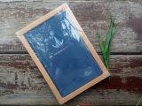 Negócio de couro personalizado do Hardcover do plutônio/caderno da escola/diário com caixa de presente (XL-48K-HP-01)