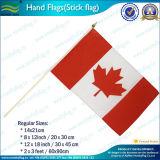 Mini drapeaux de publicité de papier de main (M-NF01P01030)