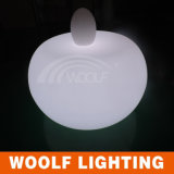 Luz plástica clara de la lámpara del huevo de vector del LED