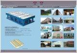De Vorm Facotry van de Tegel van het porselein van China