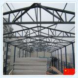 Структура Q235 Q345 стальная для мастерской & пакгауза