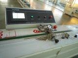 Linea di produzione di vetro d'isolamento di sigillamento del silicone della macchina di vendita calda di Parker