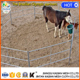 Frontière de sécurité électrique d'animal de bétail en vrac de vente en gros de ferme