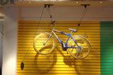 Grua interna da bicicleta do elevador da bicicleta do elevador da bicicleta