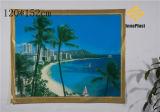 Paño de vector transparente impreso PVC del paisaje (TZ0006)