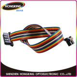 Indicador de diodo emissor de luz curvado interno de alta resolução da cor P3&P4&P5&P6 cheia para anunciar