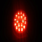 Indicatore luminoso multicolore AC12V del raggruppamento di IP68 LED PAR56