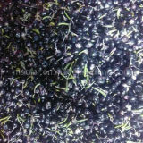 Baya negra seca orgánica de Goji del nivel superior del níspero