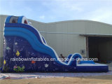 Populäres Inflatable Water Slide mit Water Pool für Kids und Adults (RB1063)