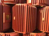 Caisse de moteur de moulage de fer d'OEM
