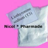 Levothyroxine 나트륨 스테로이드 호르몬 Levothyroxine 나트륨 분말 (T4)