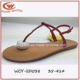 Sandales à manches longues pour femmes à chaussures style simple
