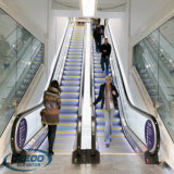 Centro comercial que construye la escalera móvil pesada segura confiable del pasajero de la fábrica barata