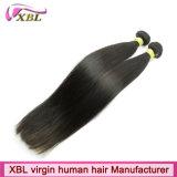 Remyのバージン100のブラジルの人間の毛髪の拡張