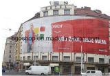PVC網の表示旗のデジタル印刷のキャンバス(1000X1000 12X12 370g)
