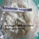 ISO auf Muskel-Gebäude-Testosteron Isocaproate aufbauendes Steroide Puder prüfen