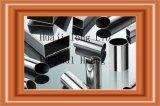 De Buis van het Roestvrij staal van het Nikkel van 8%