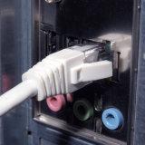 피트 백색 Cat5e UTP RJ45 이더네트 접속 코드 케이블 50