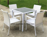 庭の藤表および椅子セット